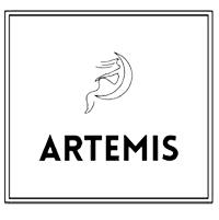 We Are Artemis